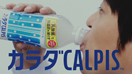 calpis.thumb